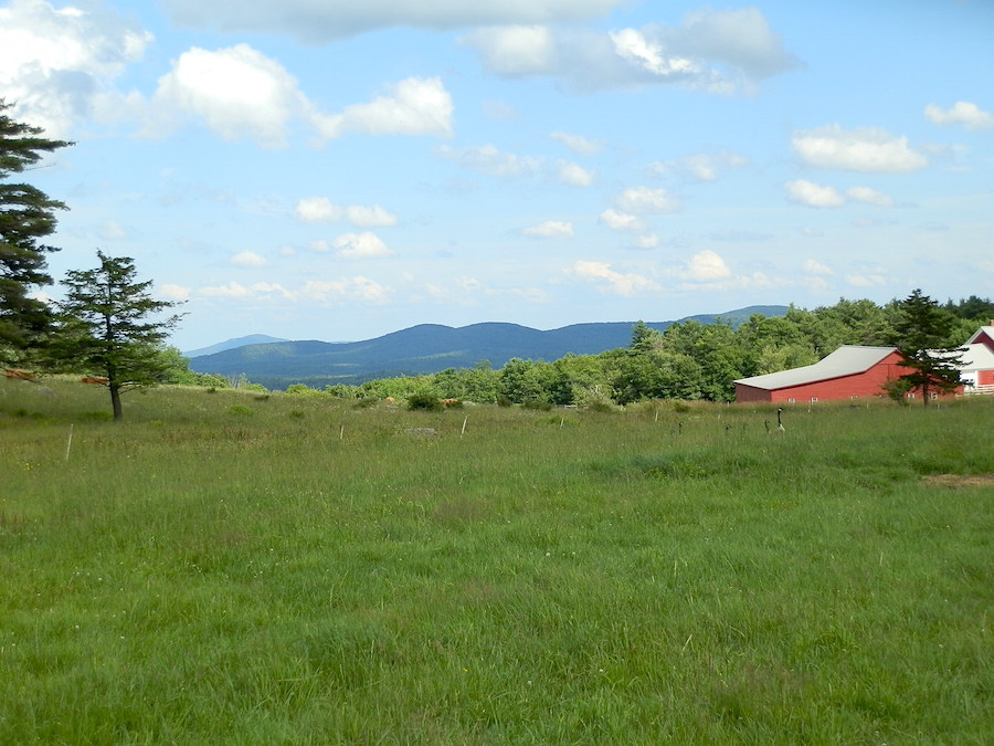 Pitcher Mountain Farm